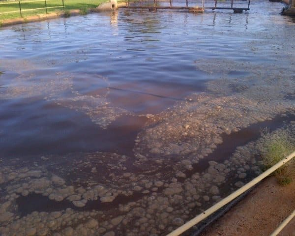 Mokopa wastewater treatment works after 3 days of application