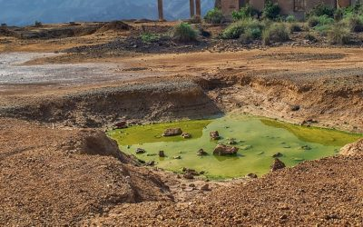How does soil contamination affect the environment